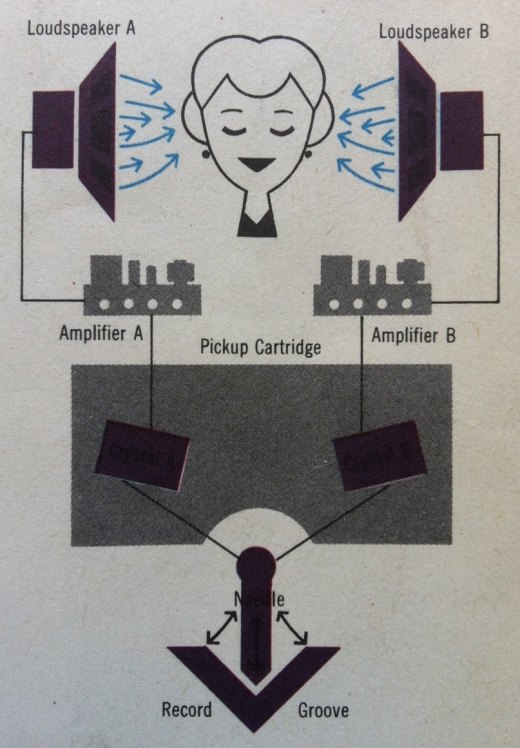 Stereo Diagram Woman